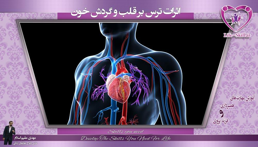 اثرات ترس بر قلب